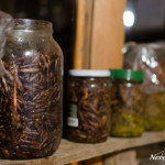 Pine fermentation for rakia