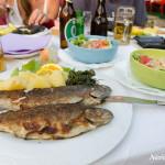 Fresh trouts at Vrelo Bune
